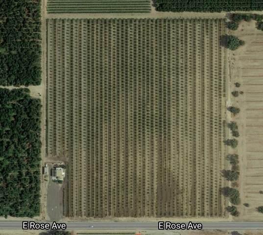 11434 E Rose Avenue, Selma, CA 93662 (#206989) :: Robyn Icenhower & Associates