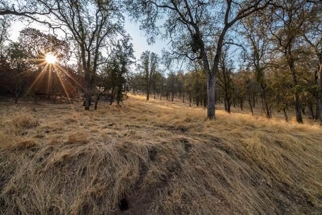 Ferndale Drive, Three Rivers, CA 93271 (#207473) :: Martinez Team