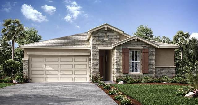 3035 S Meadowbrook Street, Visalia, CA 93292 (#207769) :: Martinez Team