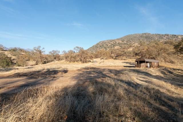 Salt Creek Road, Three Rivers, CA 93271 (#208492) :: The Jillian Bos Team