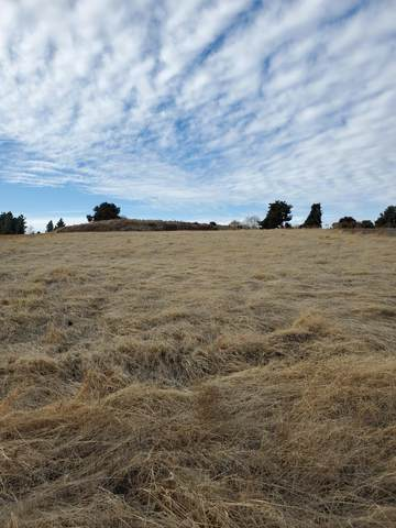 Lot 123 High Sierra Drive, Exeter, CA 93221 (#208527) :: Your Fresno Realty | RE/MAX Gold