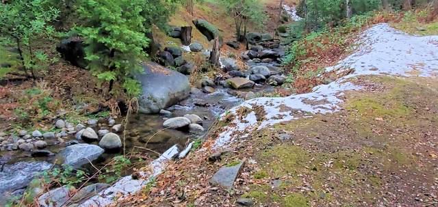 43219 Hot Springs Road, California Hot Spgs, CA 93207 (#209029) :: The Jillian Bos Team