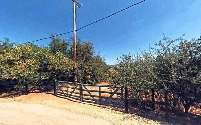 High Oaks Lane, Squaw Valley, CA 93675 (#209512) :: The Jillian Bos Team
