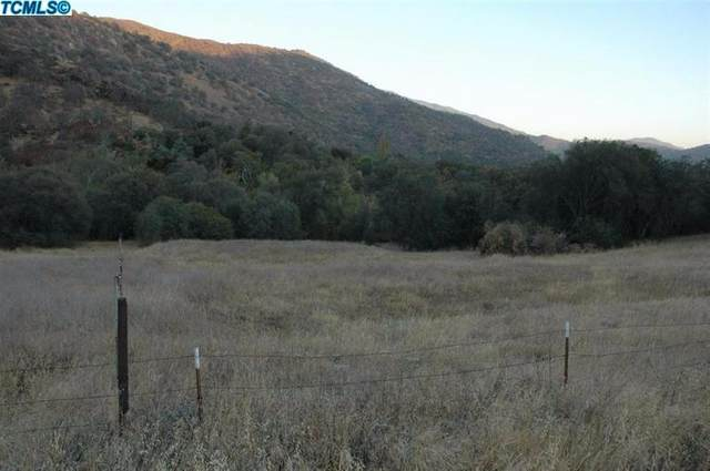 38117 Balch Park Road, Springville, CA 93265 (#209546) :: The Jillian Bos Team