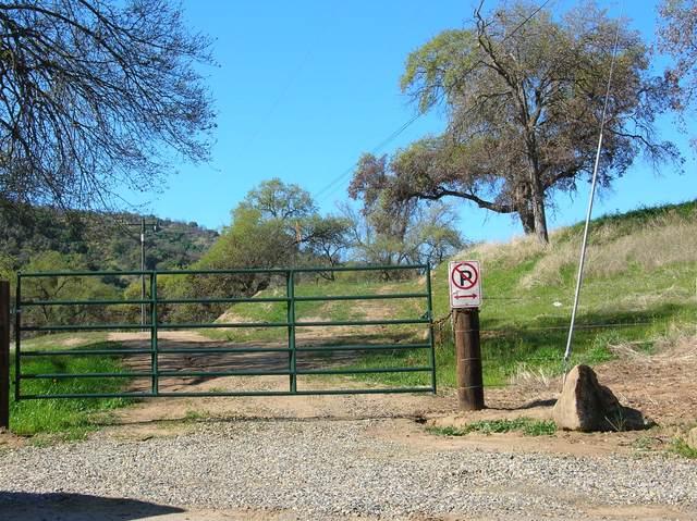 0 Salt Creek (Aka Craig Ranch) Drive, Three Rivers, CA 93271 (#209799) :: The Jillian Bos Team