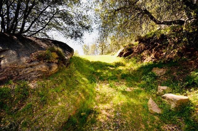 S Fork Drive, Three Rivers, CA 93271 (#210096) :: The Jillian Bos Team