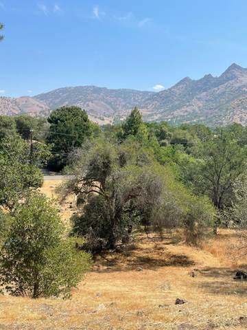 Cherokee Oaks Drive, Three Rivers, CA 93271 (#210827) :: The Jillian Bos Team