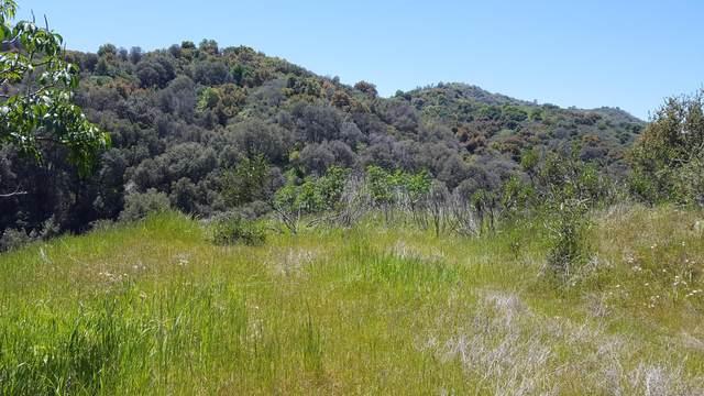 Lot 29 Capinero Oaks Court, California Hot Spgs, CA 93207 (#210996) :: The Jillian Bos Team