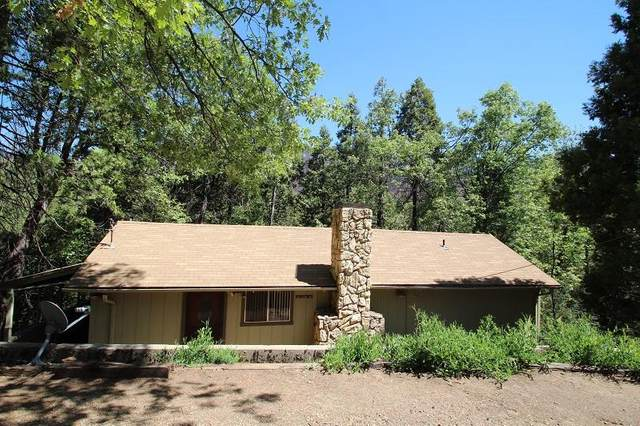 406 Clover Drive, Camp Nelson, CA 93265 (#211264) :: Robyn Icenhower & Associates