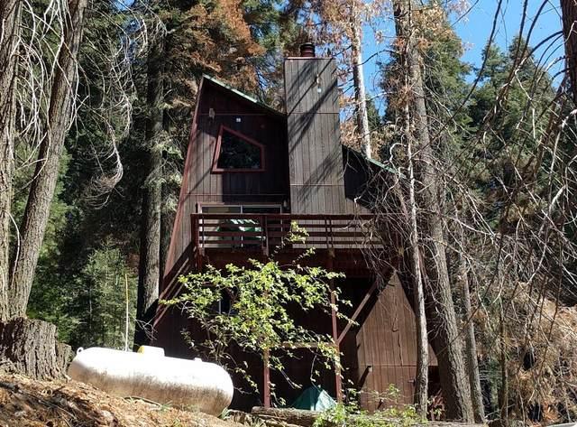 55065 Alder Drive, Sequoia Crest, CA 93265 (#211384) :: Robyn Icenhower & Associates