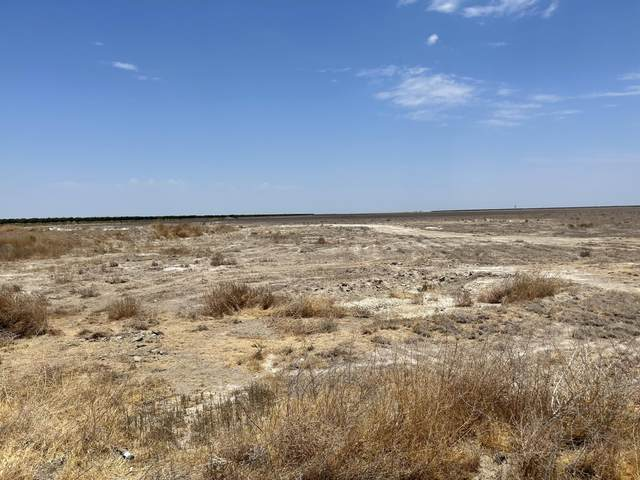 County Line Road, Alpaugh, CA 93201 (#211567) :: Your Fresno Realty | RE/MAX Gold