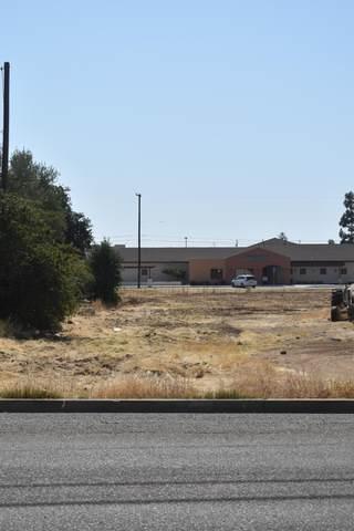 273 Pomegranate Street, Woodlake, CA 93286 (#211689) :: The Jillian Bos Team