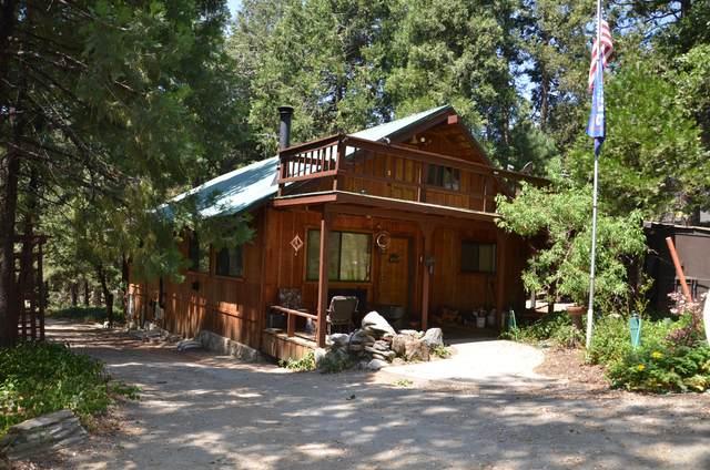511 Acorn Drive, Camp Nelson, CA 93265 (#211700) :: Martinez Team