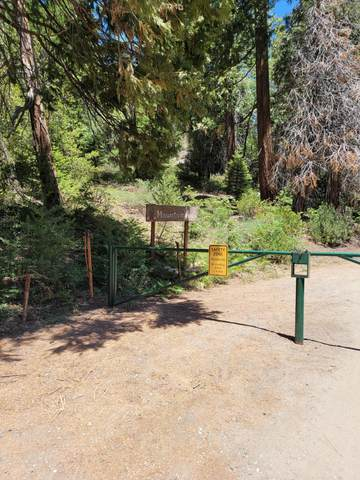118 Mountain Aire, Camp Nelson, CA 93265 (#212020) :: The Jillian Bos Team