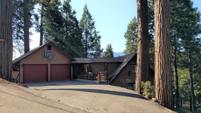 53255 Summit Drive, Alpine Village, CA 93265 (#212075) :: Martinez Team