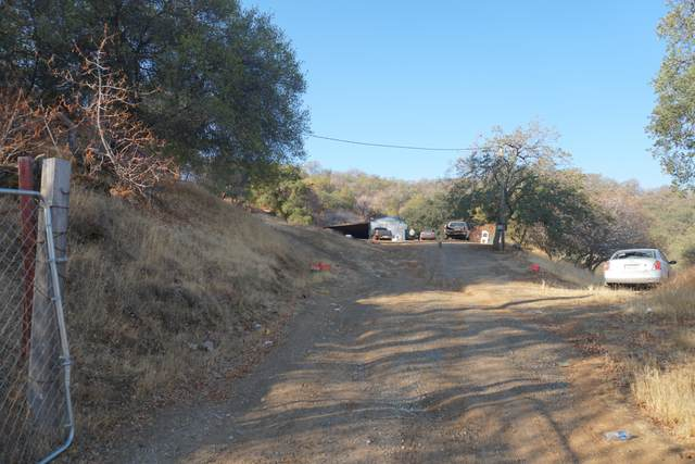 37744 Cardinal Lane, Squaw Valley, CA 93675 (#213998) :: The Jillian Bos Team