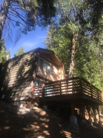 53271 Summit Drive, Alpine Village, CA 93265 (#141463) :: The Jillian Bos Team