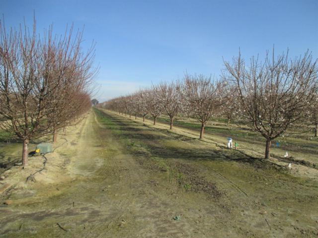 0 Berry Road, Tipton, CA 93272 (#142731) :: The Jillian Bos Team