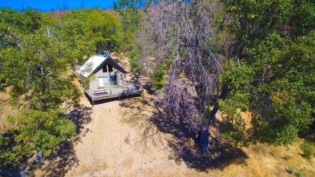 1 Milk Ranch Road, Three Rivers, CA 93271 (#206203) :: The Jillian Bos Team