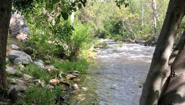 0 Old Three Rivers Rd., Three Rivers, CA 93271 (#207795) :: Martinez Team