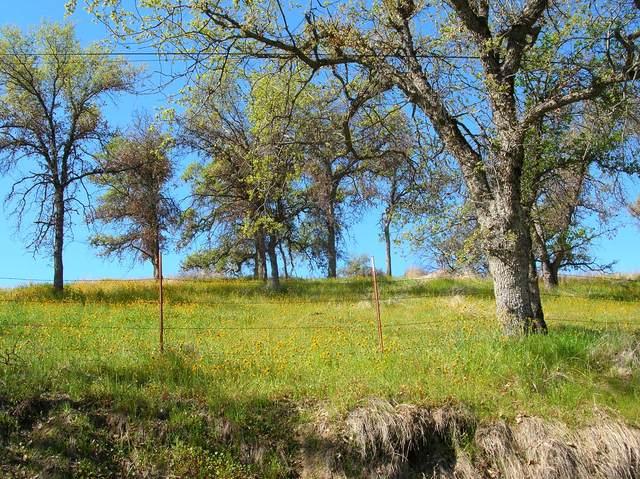 0 Salt Creek (Aka Craig Ranch) Drive, Three Rivers, CA 93271 (#209798) :: The Jillian Bos Team