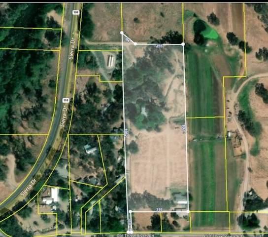 40709 Old Three Rivers Road, Three Rivers, CA 93271 (#211795) :: Robyn Icenhower & Associates