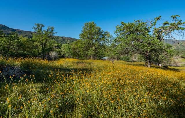 Noel Drive, Three Rivers, CA 93271 (#210050) :: The Jillian Bos Team