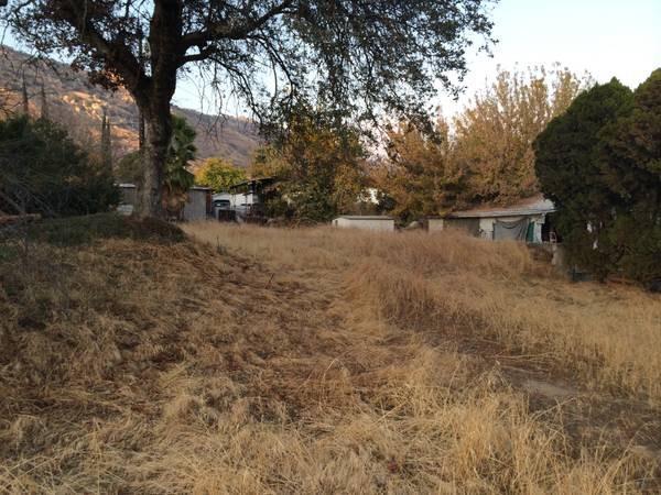 5420 James Avenue, Springville, CA 93265 (#133181) :: The Jillian Bos Team