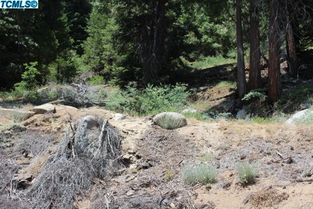 0 Redwood Drive, Alpine Village, CA 93265 (#135319) :: The Jillian Bos Team
