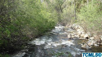43813 South Fork Drive, Three Rivers, CA 93271 (#136313) :: The Jillian Bos Team
