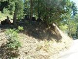 52780 Alpine Drive, Alpine Village, CA 93265 (#140016) :: Robyn Graham & Associates