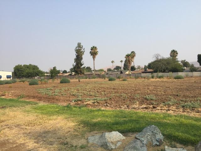 0 Prosperity Circle #2, Porterville, CA 93257 (#140324) :: Robyn Graham & Associates