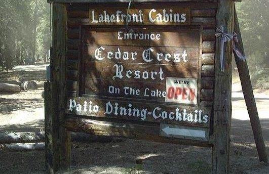 61011 Cedar Crest Lane Avenue - Photo 1