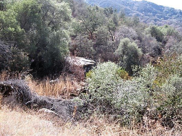 0 Oak Grove Ct B - Photo 1