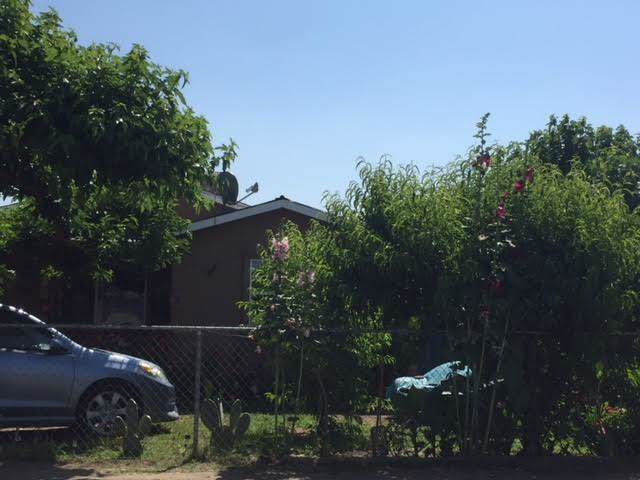 19544 Road 230, Strathmore, CA 93267 (#146346) :: The Jillian Bos Team