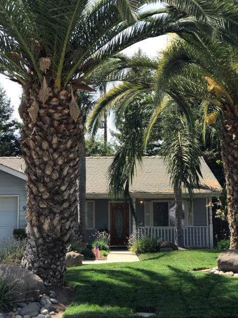 933 S Laguna Street, Visalia, CA 93292 (#202650) :: The Jillian Bos Team