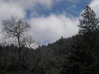 Lot 52 Flying T Drive, California Hot Spgs, CA 93207 (#207750) :: The Jillian Bos Team
