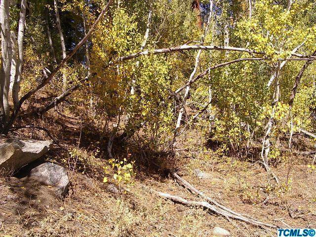 56874 Aspen Drive - Photo 1