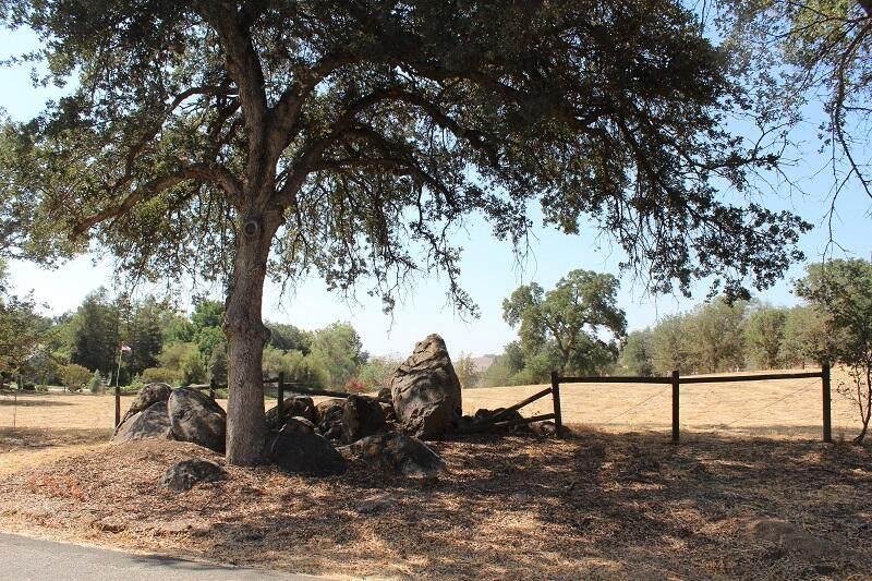 33359 Tule Oak Drive - Photo 1