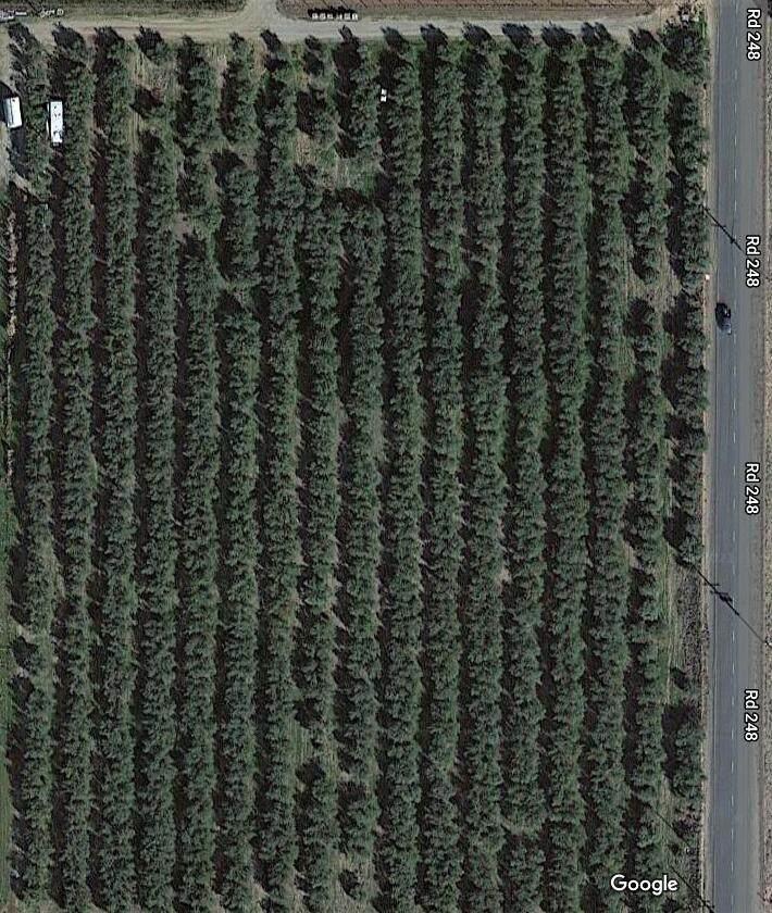 Road 248 - Photo 1