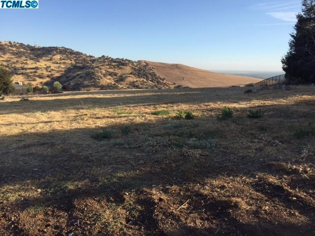0-Lot 7 Valley View Drive, Exeter, CA 93277 (#122143) :: The Jillian Bos Team