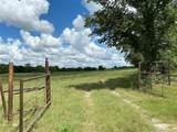 Water Moccasin Road - Photo 6