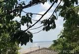 2772 Lakeshore Bluff - Photo 1