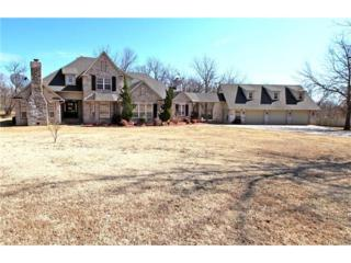 15447 N Woodchuck Lane, Skiatook, OK 74070 (MLS #1708582) :: 918HomeTeam