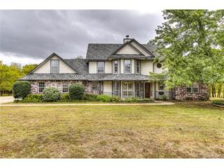 5301 Country Circle, Skiatook, OK 74070 (MLS #1710307) :: 918HomeTeam