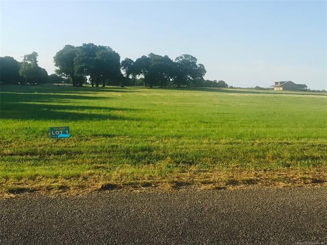 Taylor Road, Kingston, OK 73439 (MLS #1822360) :: Hopper Group at RE/MAX Results