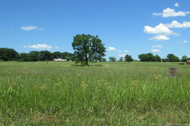 0 County Road 1510, Ada, OK 74820 (MLS #1822472) :: Hopper Group at RE/MAX Results