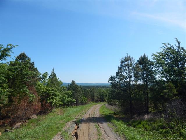 State Hwy 63 Highway, Hartshorne, OK 74547 (MLS #1837189) :: Hopper Group at RE/MAX Results