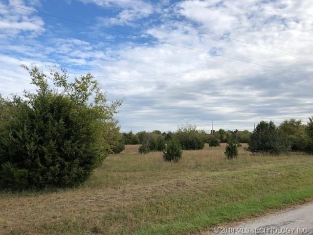 E 390 Road, Oologah, OK 74053 (MLS #1838219) :: Hopper Group at RE/MAX Results