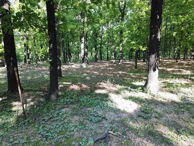 Plum Tree Road, Salina, OK 74365 (MLS #1937261) :: 918HomeTeam - KW Realty Preferred
